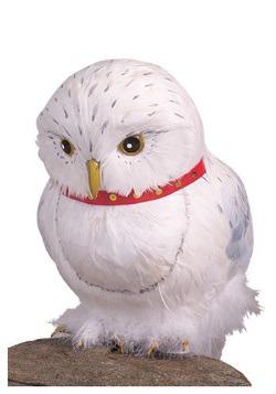 Accesorio de Hedwig