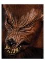 Máscara de hombre lobo Howl O Ween