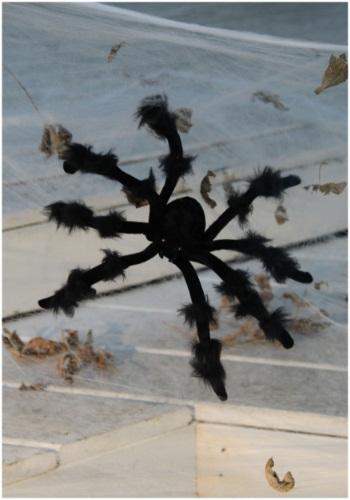 Araña negra flexible de 20 pulgadas