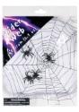 Telaraña con arañas
