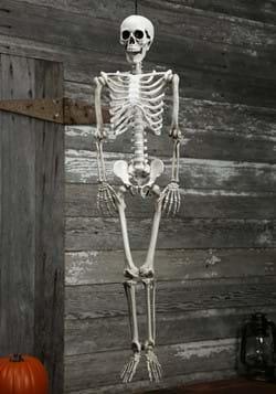 Esqueleto Realista de plástico