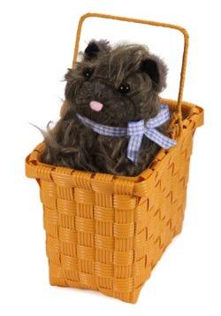 Toto en la canasta