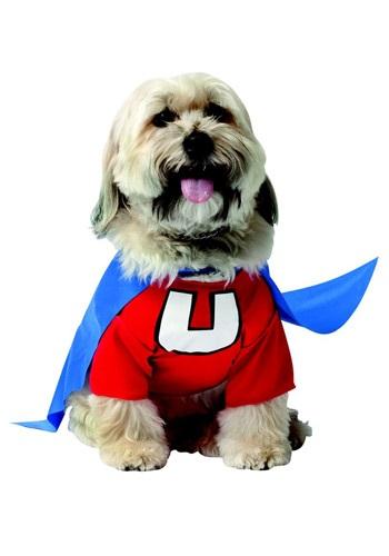 Disfraz de perro Underdog