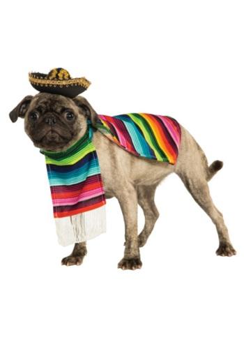 Disfraz de mascota con zarape mexicano