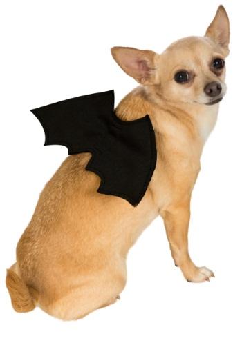 Disfraz para mascota de alas de murciélago