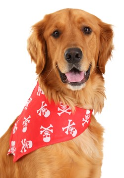 Disfraz con cinta de calaveras y huesos para mascota