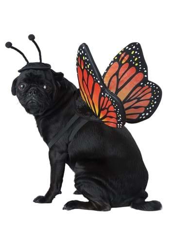 Disfraz de mariposa para mascota