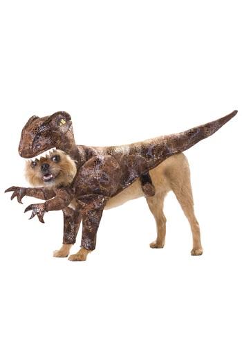 Disfraz de Raptor para mascotas