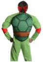 Deluxe Adult Raphael volver