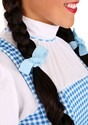 Adult Dorothy Costume Alt 1