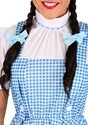 Adult Dorothy Costume Alt 2
