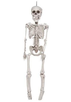 Esqueleto plástico realista de 20 pulgadas