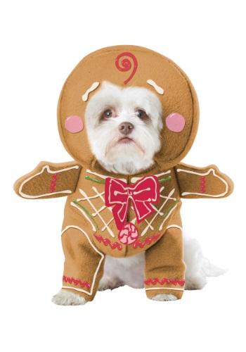 Disfraz para perro de hombre de jengibre