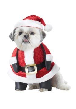 Disfraz de perro de Santa