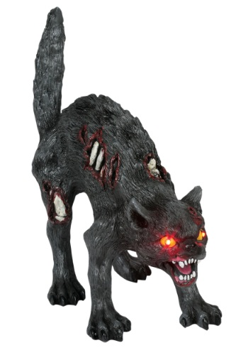 Zombi Cat