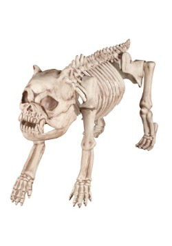 Perro esqueleto de Bones the Hungry Hound