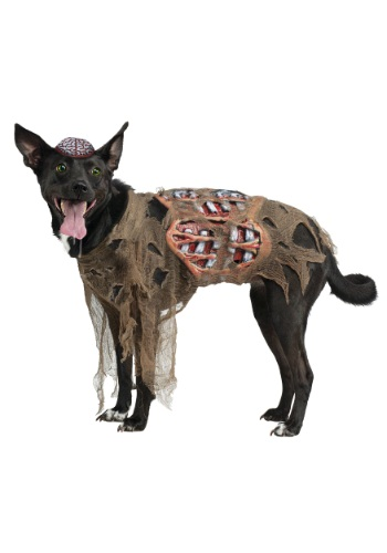 Disfraz de perro zombi