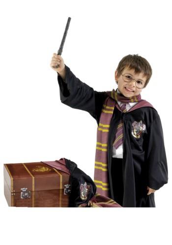 Baúl con disfraz de Harry Potter