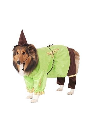 Disfraz de espantapájaros para mascota