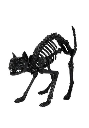 Esqueleto de gato negro de utilería