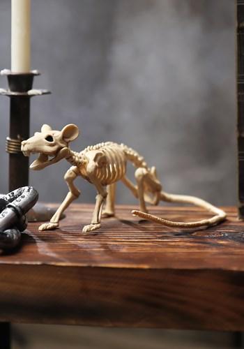 Mini rata esqueleto Update