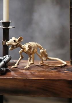 Mini rata esqueleto