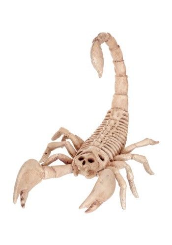 Mini escorpión esqueleto