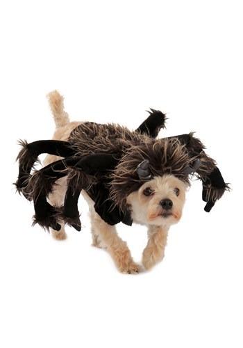 Disfraz para perro de tarantula