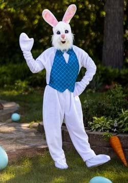 Disfraz de mascota conejito de Pascua feliz