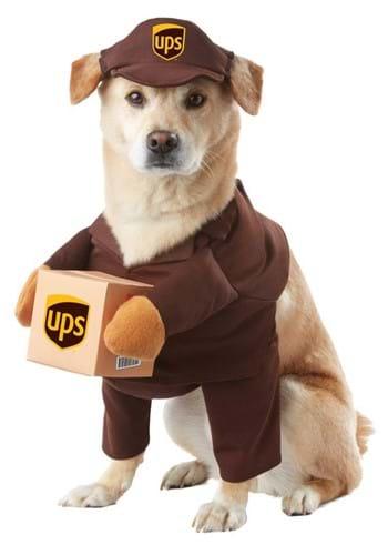 Disfraz de perro UPS