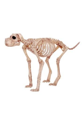 Bruiser Bonez, el perro esqueleto