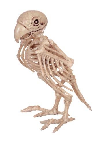 Loro esqueleto