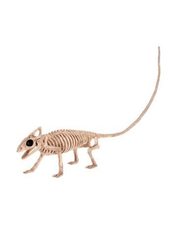 Lagarto de esqueleto