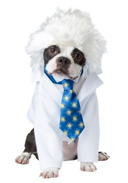 Disfraz para mascota de Al-bark Einstein