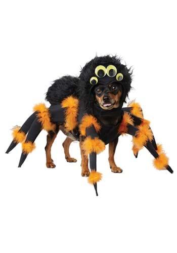 Disfraz de araña para cachorro