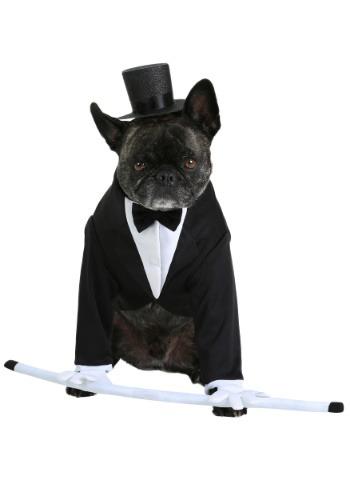 Disfraz formal de esmoquin para perro