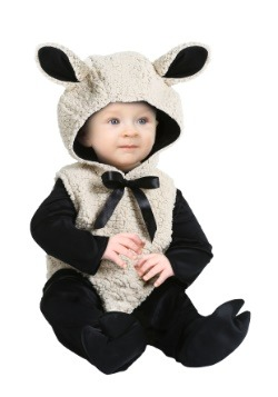 Infant Baby Lamb