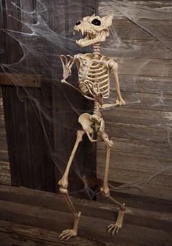 "Esqueleto de hombre lobo Pose-N-Stay de 64"""