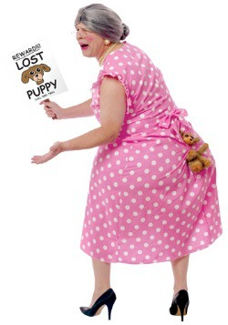 Disfraz de perro perdido