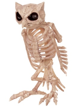 Búho esqueleto