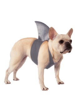 Disfraz de aleta de tiburón mascota