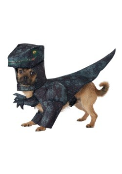 Disfraz de perro Pupasaurus Rex