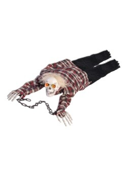 Esqueleto reptante
