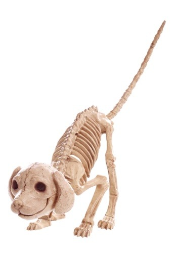 "7.5 ""Puppy Skeleton"