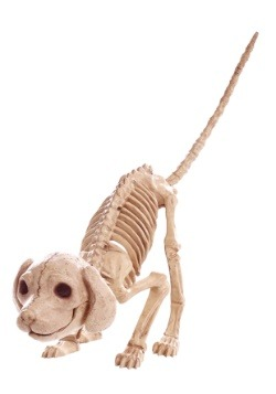 "7.5 ""Puppy Skeleton"