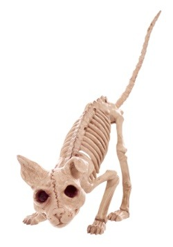 "7.5 ""Kitty Skeleton"