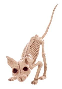 """7.5 """"Kitty Skeleton"""