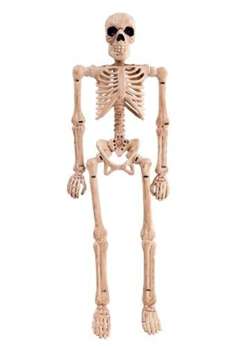 """Esqueleto plegable de 8"""""""