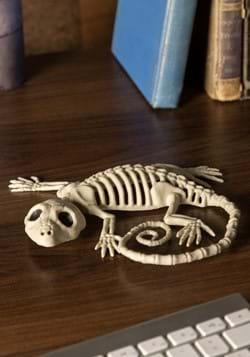 """Decoración de esqueleto de Gecko de 7 """""""