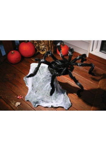36 '' Giant Jumping Spider